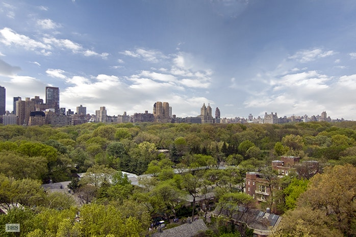 Additional photo for property listing at 810 FIFTH AVENUE  New York, New York,10021 Hoa Kỳ