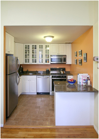 Fort Greene Photo 2 - TERRAHOLDINGS-3689260