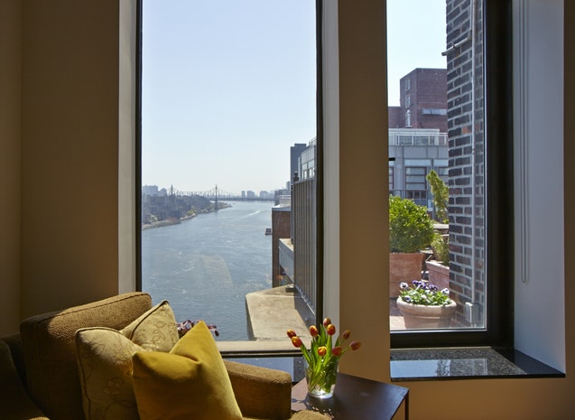 Additional photo for property listing at 10 GRACIE SQUARE  New York, ニューヨーク,10028 アメリカ合衆国