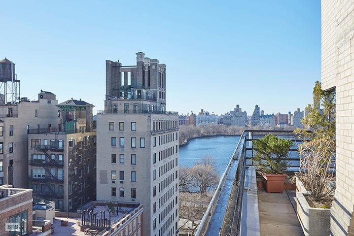 Additional photo for property listing at 19 EAST 88TH STREET  New York, Нью-Йорк,10128 Соединенные Штаты