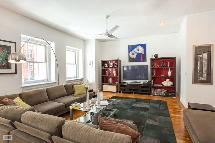 Additional photo for property listing at 105 HUDSON STREET  New York, New York,10013 Hoa Kỳ