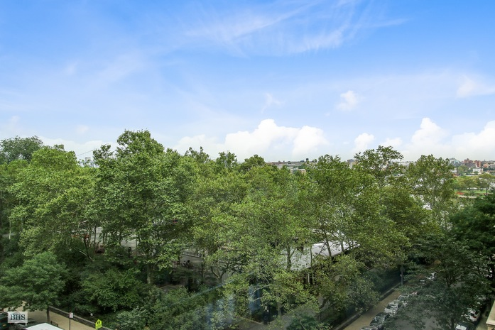 Additional photo for property listing at 90 EAST END AVENUE  纽约, 纽约州,10028 美国