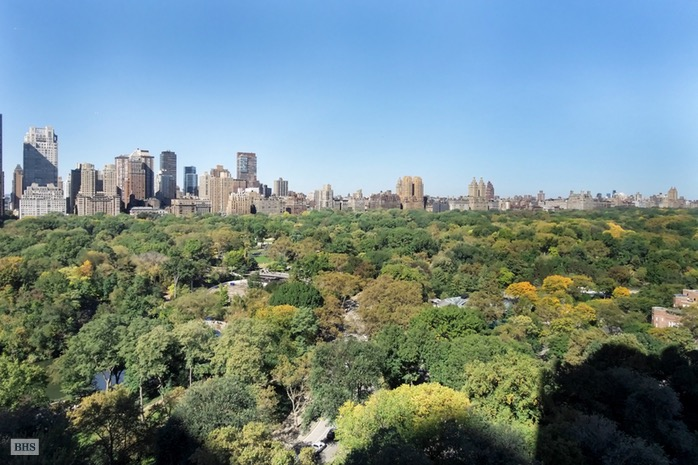 795 Fifth Avenue, Upper East Side, NYC, $18,000,000, Web #: 16347030