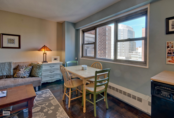 Studio With A View, Brooklyn, New York, $295,000, Web #: 10364652