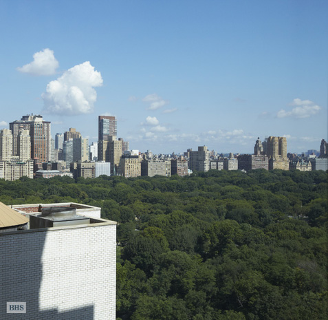 1 Central Park South 1802, Midtown East, NYC, $3,850,000, Web #: 1264295
