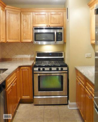 333 Pearl Street, Civic Center/Two Bridges, NYC, $2,950, Web #: 14639808