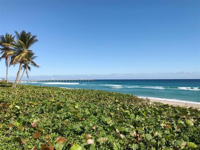3120 S Ocean Boulevard 1-